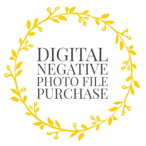 Digital Negative Photo File Purchase